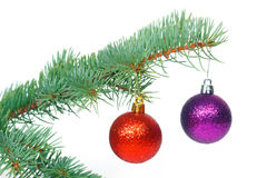 Red and violet balls on the Christmas tree Stock Image