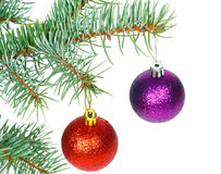 Red and violet balls on the Christmas tree Royalty Free Stock Photos