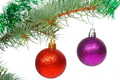 Red and violet balls on the Christmas tree Royalty Free Stock Photo