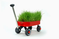 Free Red Wagon Stock Images - 2783174