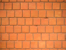 Red wall, square bricks. Stock Images