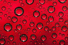 Red water background Stock Images