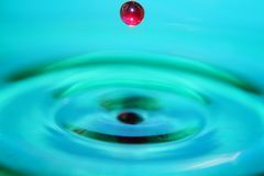 Red Water drop splashing in blue water stock images