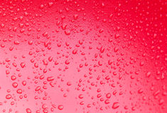 Red water drops. On background Stock Photo