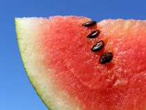 Red water melon Royalty Free Stock Photos
