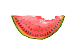 Red water melon, watercolor illustrator Stock Photography