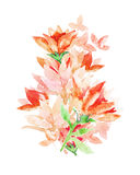 Red watercolor flowers. Royalty Free Stock Images
