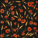 Red watercolor poppies seamless pattern. Colorful watercolor wild poppies on a dark background Royalty Free Illustration