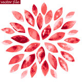 Red Watercolor Sunburst Flower Stock Photography