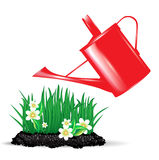 Red watering can and flowers Stock Photos