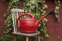 Red Watering Can royalty free stock photography