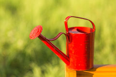 Red watering-can Stock Image