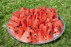 Red watermelon cutted slice piece on plate and grass Royalty Free Stock Images