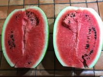 Red watermelon. In African areas it is a true source of water and food stock photo