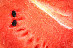 Red watermelon texture Stock Images