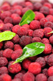 Red waxberry market Stock Photos