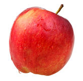 Red wealthy apple Stock Photo