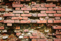 Red weathered dirty brick wall Stock Photo