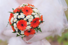 Red wedding bouquet. Bride with a red wedding bouquet Royalty Free Stock Photography