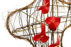 Red wedding flowers Royalty Free Stock Photos