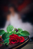 Red wedding rose on a blur backgrounds with bride Royalty Free Stock Photos