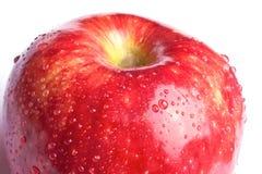 Red wet apple Stock Photos