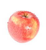 Red wet apple Stock Image