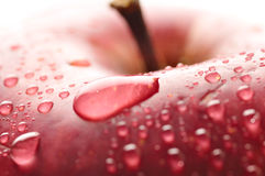 Red wet apple with big droplet Stock Images
