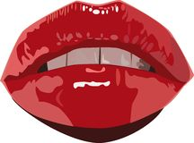 Red wet pouting lips Stock Images