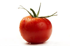 Red wet tomato. One red wet tomato isolated on white background Royalty Free Stock Photos