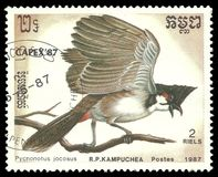 Red Whiskered Bulbul, Pycnonotus jocosus. Cambodia - stamp printed 1987, Multicolor Memorable issue of offset printing, Topic Birds and Philatelic Exhibitions Stock Images