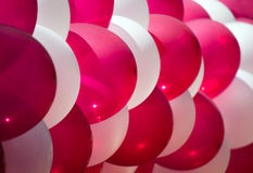 Red and white balloons Royalty Free Stock Image