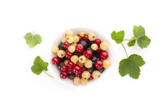 Red, white and black currant on white background. Red, white and black currant on white background with reflection. Healthy summer fruit eating Royalty Free Stock Photography