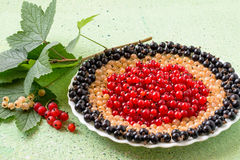 Red, white and black currants on a plate. Red, white and black currants, stacked rings on a plate, twig currant with leaves on a green background. Selective Royalty Free Stock Images