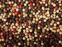 Red, white and black peppercorns Royalty Free Stock Images