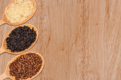 Red, white, and black rice in a wooden spoon Royalty Free Stock Photos