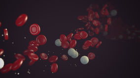 Red and white blood cells flowing trough blood stream Royalty Free Stock Photography