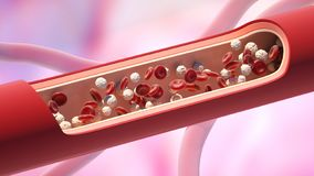 Red and white blood cells in the vein. Leukocyte high level. 3D illustration royalty free illustration
