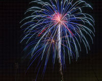 Red, White and Blue Fireworks royalty free stock images