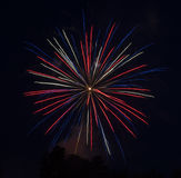Red-White-Blue Fireworks Royalty Free Stock Photography