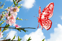 Red and white butterfly flying around peach blossom. Red and white butterfly flying around pink peach blossom royalty free stock photo