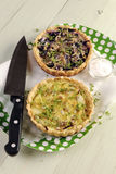 Red and white cabbage tarts with cheese Stock Image