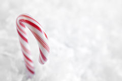 Red and White Candy Canes Stock Photo