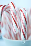 Red and White Candy Canes in Christmas Cup Stock Photos