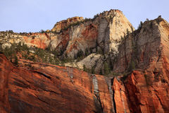 Red White Canyon Walls Zion Canyon Utah stock photography