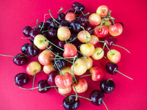 Red and White Cherries. Cherries on the red background Royalty Free Stock Photo
