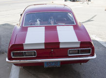1968 Red and White Chevy Camaro Rear View Stock Image