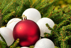 Red and white christmas balls Royalty Free Stock Photos