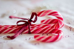 Red and white Christmas candy canes. Candy canes as Christmas ornaments with shallow depth of field Royalty Free Stock Photography