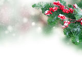 Red and white christmas Stock Photography